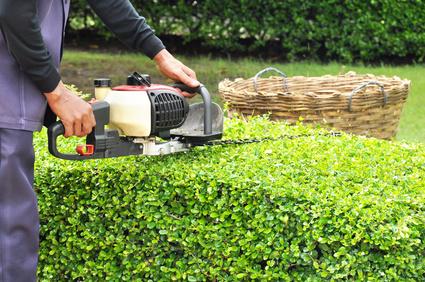 garden-services-peterborough